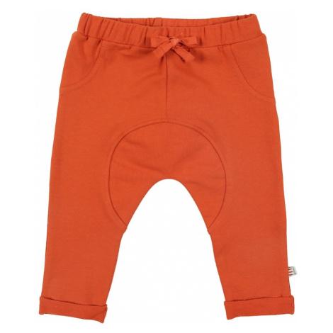 Hust & Claire Spodnie pomarańczowo-czerwony