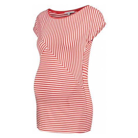 Noppies Koszulka 'Abbey' biały / pomarańczowo-czerwony