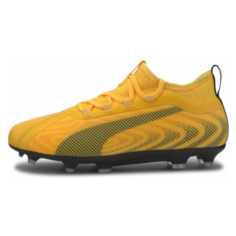 Puma ONE 20.2 Junior FG Football Boots