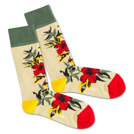 DillySocks Skarpety 'Dry Flower' beżowy / żółty / zielony / czerwony