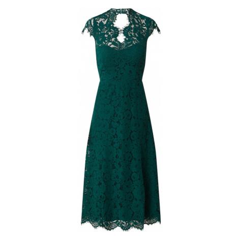 IVY & OAK Sukienka koktajlowa 'Lace' ciemnozielony