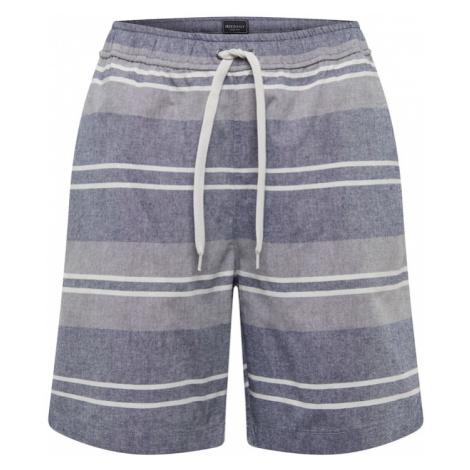 Iriedaily Spodnie niebieski / szary