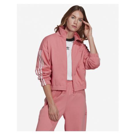 adidas Originals Adicolor 3D Trefoil Bluza Różowy