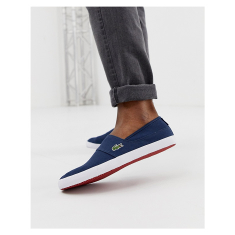 Lacoste Marice slip on plimsolls in navy