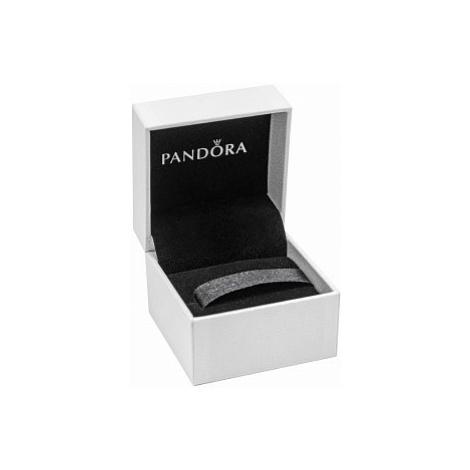 Pandora Zawieszka 798871C01