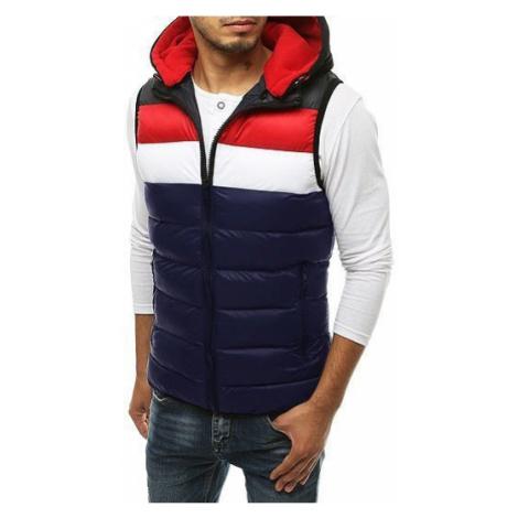 Men's quilted hooded vest Navy TX3366 DStreet