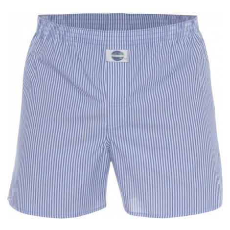 D.E.A.L International Bokserki 'Stripe' niebieski / biały