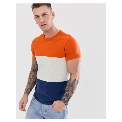 Selected Homme colour block stripe t-shirt in organic cotton