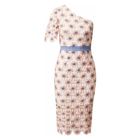 Chi Chi London Sukienka etui 'Winona' biały / łososiowy / niebieski