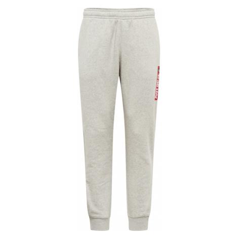 Nike Sportswear Spodnie jasnoszary