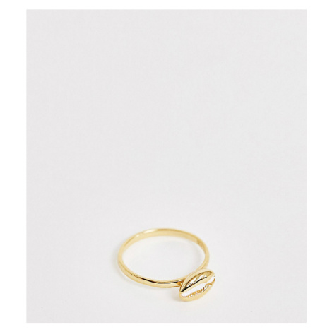 ASOS DESIGN Sterling silver with gold plate ring with sea shell design