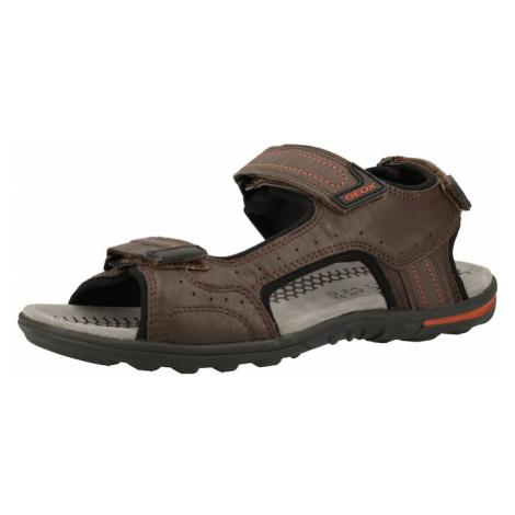 GEOX Sandały trekkingowe brązowy