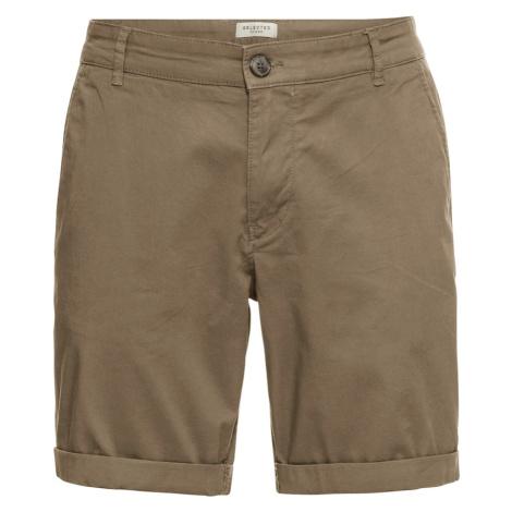 SELECTED HOMME Spodnie camel / brązowy