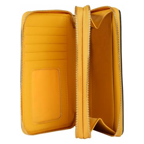 ALDO Portmonetka 'AFORERI' żółty