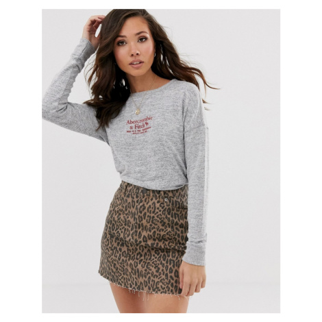 Abercrombie & Fitch cosy logo top in grey