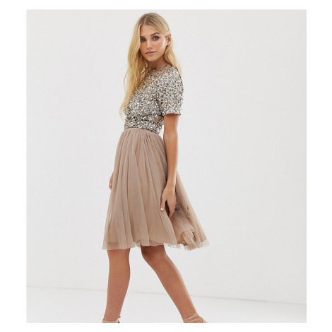 Lace & Beads tulle midi skirt in taupe