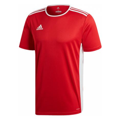 """""""Koszulka adidas Entrada 18 (CF1038)"""""""