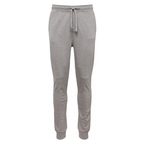 Calvin Klein Jeans Spodnie 'INSTITUTIONAL JOGGING PANT' szary