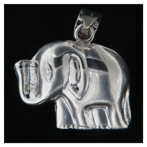 Wisiorek srebrny 14020