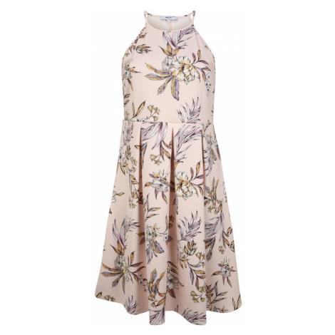 ABOUT YOU Curvy Sukienka 'Jeromina' żółty / fioletowy / różowy pudrowy