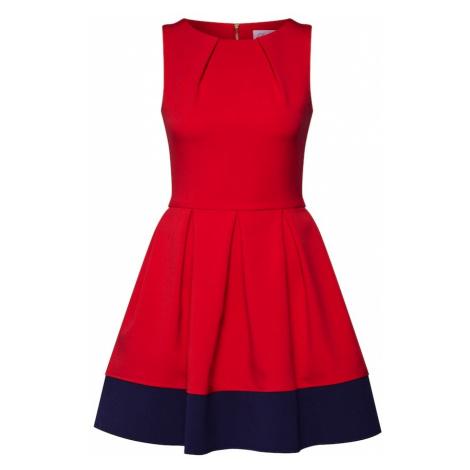 Closet London Sukienka koktajlowa granatowy / czerwony