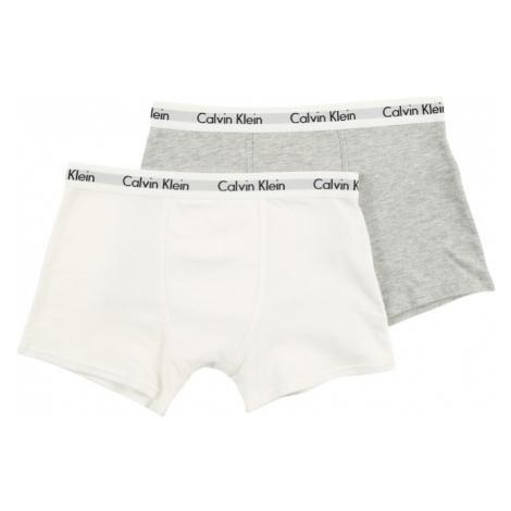 Calvin Klein Underwear Bielizna nakrapiany szary / biały