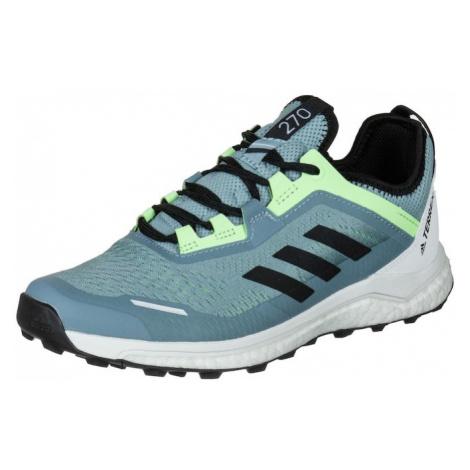 ADIDAS PERFORMANCE Buty do biegania 'Terrex Agravic Flow Trail' biały / pastelowy niebieski / ne