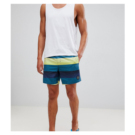 O'Neill Santa Cruz Stripe Shorts