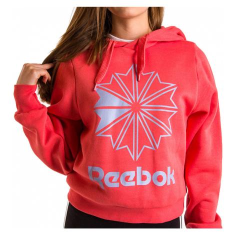 REEBOK CLASSICS BIG LOGO FLEECE HOODIE > EB5139
