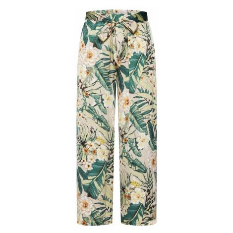 SISTERS POINT Spodnie 'GANT-PA3' zielony / różowy pudrowy